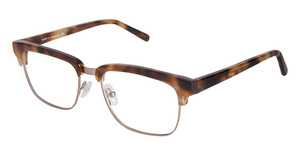 A&A Optical Emory Tortoise