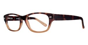 Eight to Eighty Brooklyn Eyeglasses