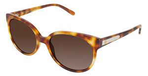 Ann Taylor ATSEASCAPE Sunglasses