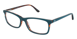 Ann Taylor AT324 Teal/Tortoise