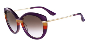 Salvatore Ferragamo SF724S Sunglasses