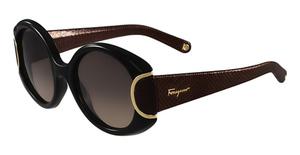 Salvatore Ferragamo SF811SL SIGNATURE Sunglasses