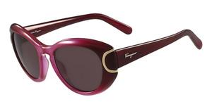 Salvatore Ferragamo SF818S Sunglasses