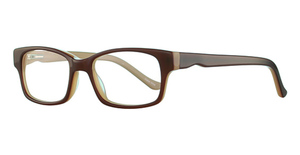 Capri Optics T 26 Brown