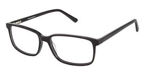 A&A Optical Bearcat Black