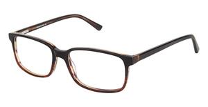 A&A Optical Bearcat Black Demi
