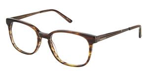 Cubavera CV 162 Eyeglasses