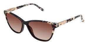 0acb6a5e47 Ted Baker B738 Eyeglasses Frames