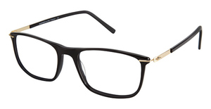 A&A Optical Mastodon Black