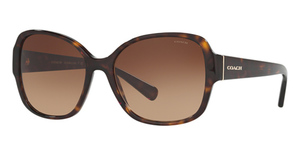 Coach HC8166 Sunglasses