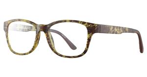 Aspex C5042 Eyeglasses
