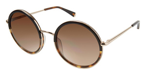 Kate Young K530 Black/Gold