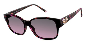 Jimmy Crystal New York JCS300 Magenta Tortoise