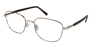 Aristar AR 16243 Eyeglasses