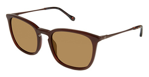 Champion 6039 Sunglasses
