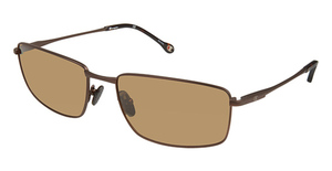 Champion 6037 Dark Brown
