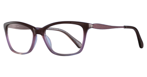 Aspex EC403 1-Brown & Light Pink