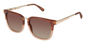 Sperry Top-Sider Newburyport Sunglasses