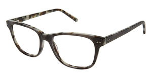 Kate Young K312 Grey Tortoise