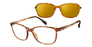Revolution Eyewear Portland Eyeglasses