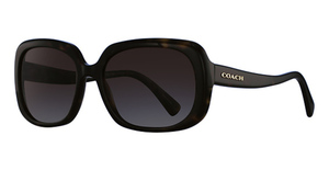 Coach HC8178 Sunglasses
