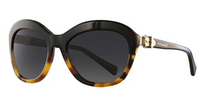 Coach HC8184 Sunglasses