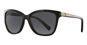 Coach HC8187B Sunglasses