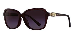 0381842079 Coach HC8179F Sunglasses