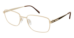 Aristar AR 16220 Eyeglasses