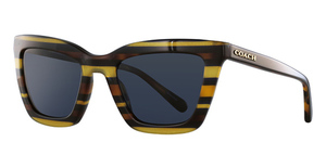 Coach HC8203 Sunglasses