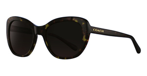 Coach HC8204 Sunglasses