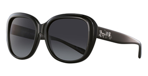 Coach HC8207 Sunglasses