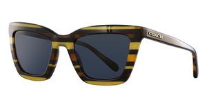 2d38a9e76d36d Coach HC8179 Sunglasses