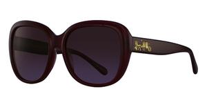 Coach HC8207F Sunglasses
