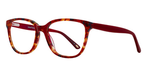 KONISHI KA5795 Eyeglasses