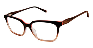 Kate Young K316 Brown/Light Brown