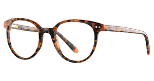 Addicted Brands Elgin Orange Tortoise