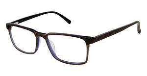 Ted Baker TB804 Eyeglasses