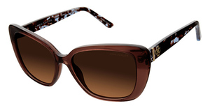 Ann Taylor ATP903 Brown/Blue Tort