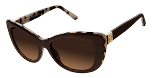 Ann Taylor ATP905 brown / tort