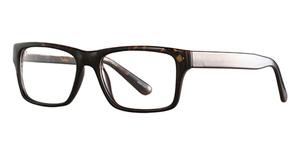 Orbit 5572 Eyeglasses