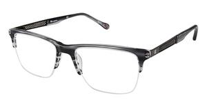 Champion 2014 Eyeglasses