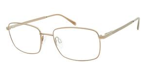 Aristar AR 16264 Eyeglasses