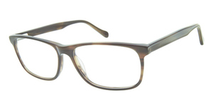 Aristar AR 18653 Eyeglasses