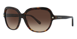 Coach HC8192 Sunglasses