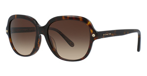 Coach HC8192F Sunglasses