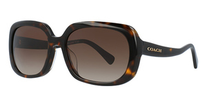 Coach HC8178F Sunglasses