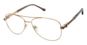 Buffalo by David Bitton BW503 Eyeglasses
