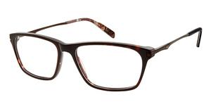 Real Tree R709 Eyeglasses