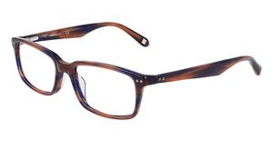 Marchon M-CARLTON (410) BLUE-BROWN HORN